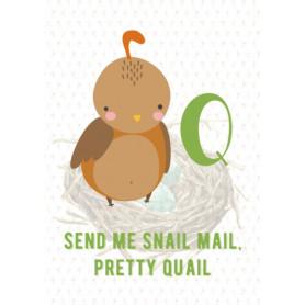 Quail Snail Mail - Alphabet Q