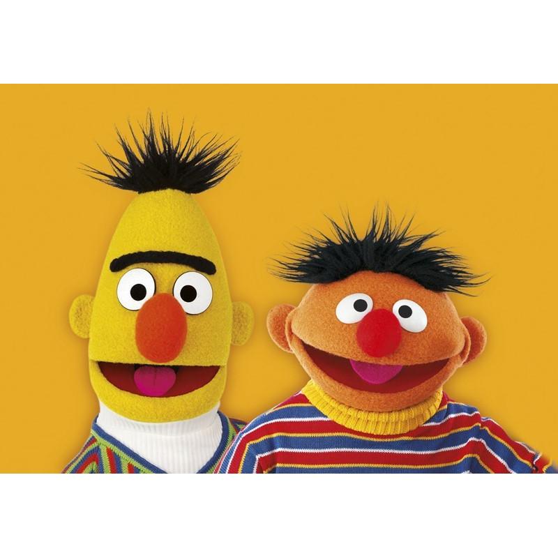 Sesamstraat - Bert & Ernie