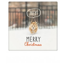 Pickmotion - Hey! Merry Christmas
