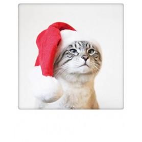 Pickmotion - Christmas cat