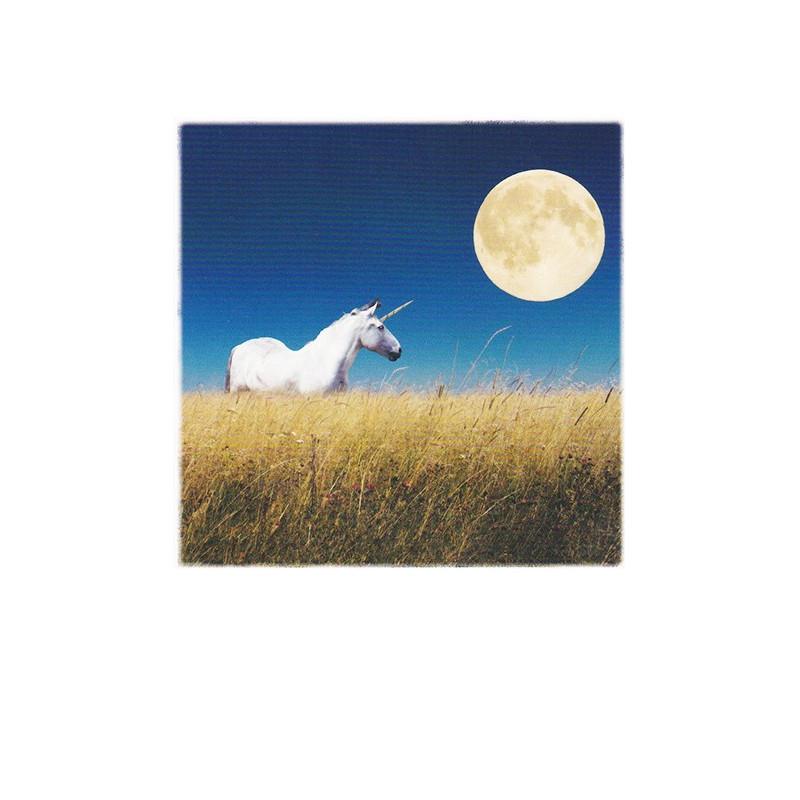 Polarcard - Eenhoorn