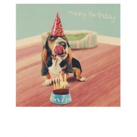 Polacard - Verjaardagshond