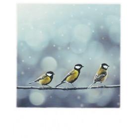Polacard - Three Birds