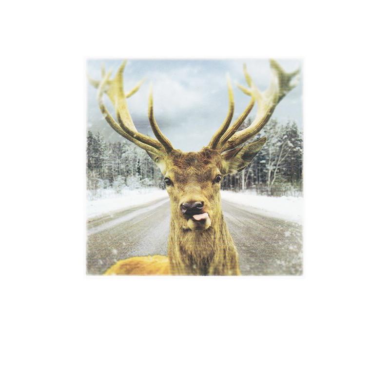 Polarcard -Edelhert