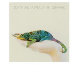 Polarcard - Chameleon