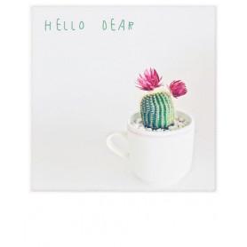 Polacard - Dear Cactus