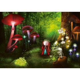 Ila Illustrations - Magic Wood