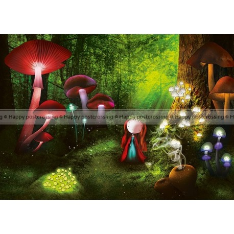 Ila Illustrations - Magic Wood