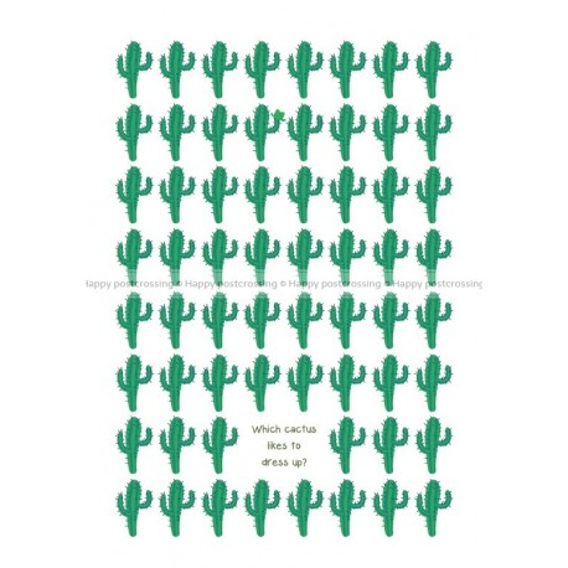 Zoekplaatje - Cactus