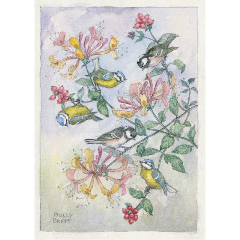Molly Brett - Birds on a honeysuckle