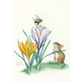 Molly Brett - Bee on the Flower