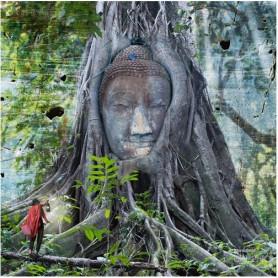 Maïlo - Buddha