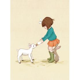 Belle & Boo - Lamb