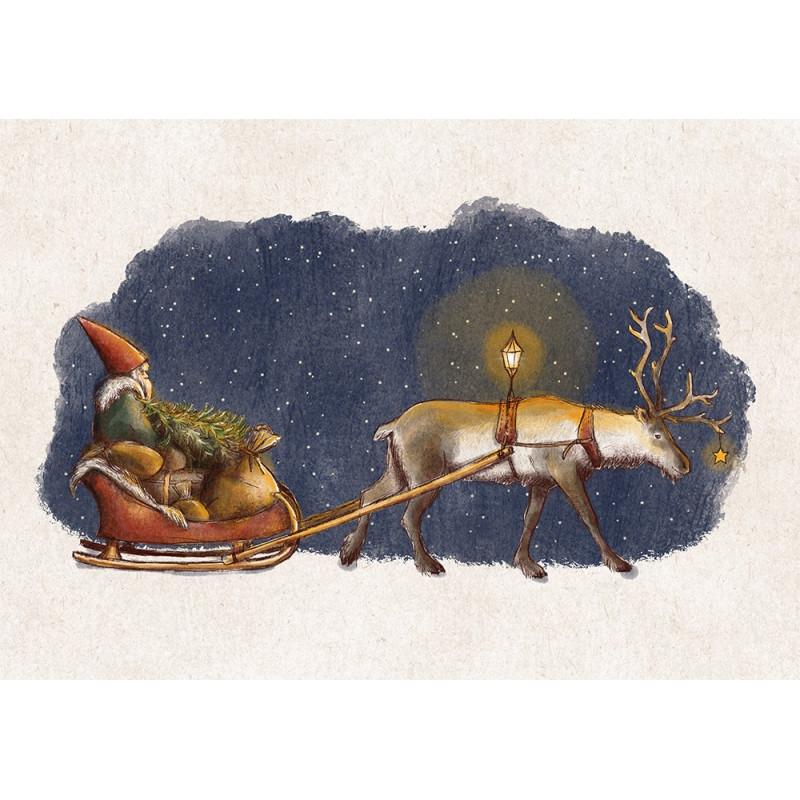Veera Aro - Reindeer sleigh