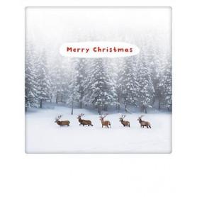 Pickmotion - Merry christmas reindeer